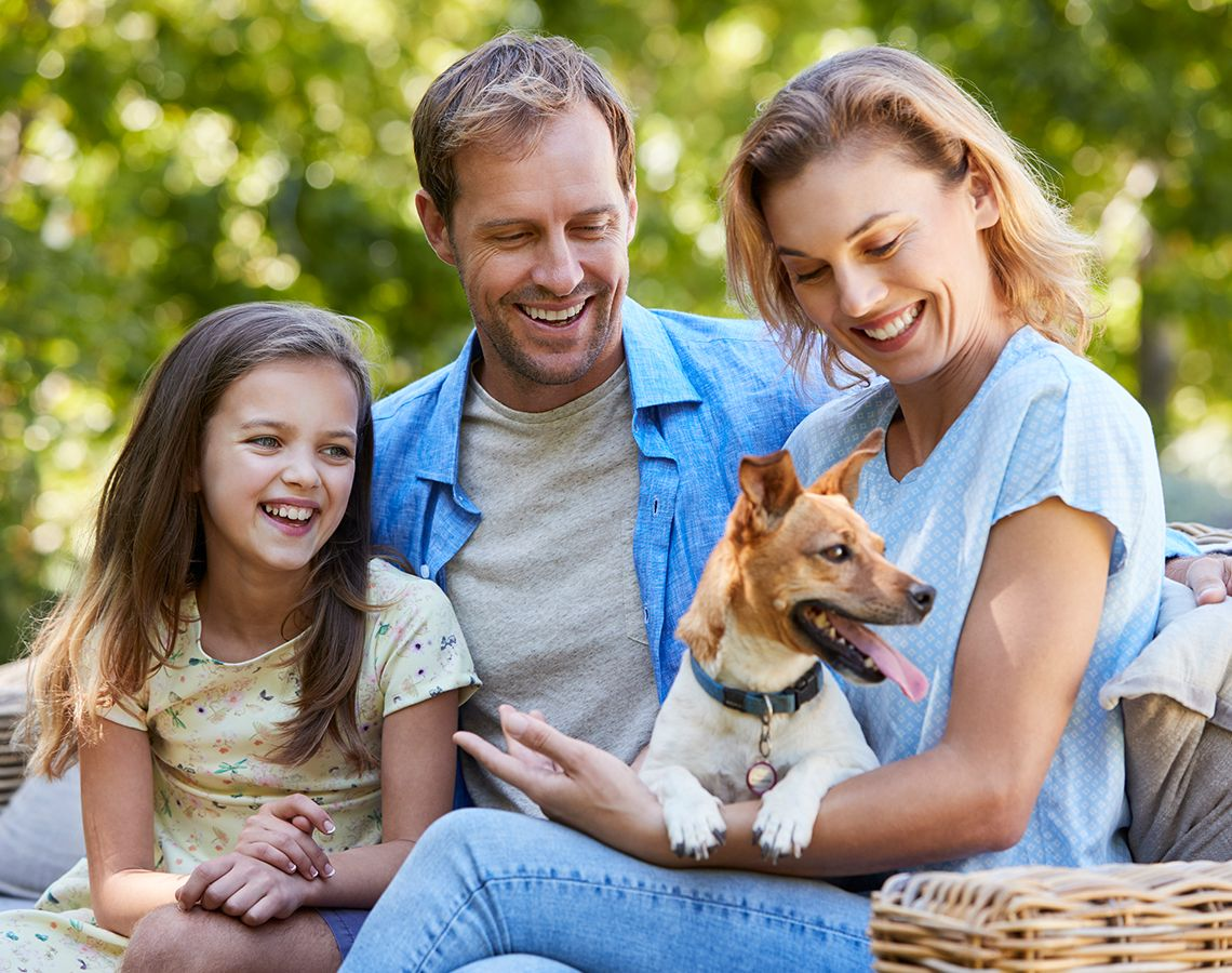 Carattere del Jack Russell in famiglia