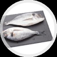 Alimentazione Pesce